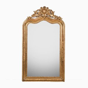 Louis XV Flower Mirror