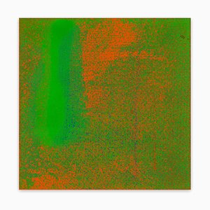 Stephen Maine, Hp13-0909, 2013, Acrylique sur Toile