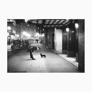 Commissionaires Dog, Photographic Paper