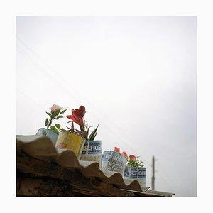 Caroline Irby, Untitled (Tajikistan), 2007, Digital C-Type Print