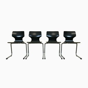 Pagholz Stuhl mit Stahlrohr, 1970er