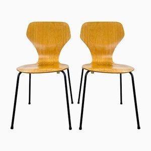 Danish Chair from Phoenix