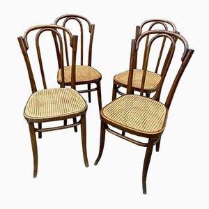 Bugholz Nr. 80 Stühle von Jacob & Josef Kohn, 4er Set
