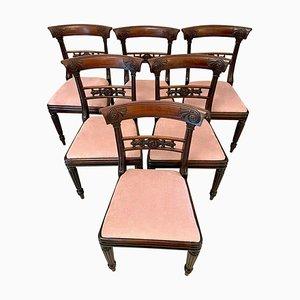 Regency Esszimmerstühle aus Mahagoni, 6er Set