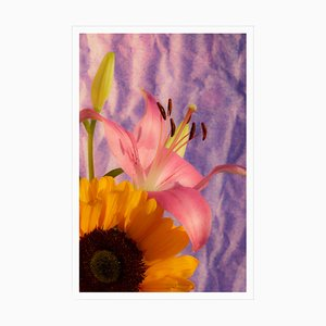 Kind of Cyan, Sunflower Lily, 2021, Giclée Print on Photographic Paper
