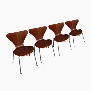 Teak 3107 Esszimmerstühle von Arne Jacobsen für Fritz Hansen, 4er Set, 1960er