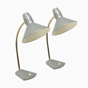 Graue Tischlampe von H. Busquet für Hala Zeist, 1960er