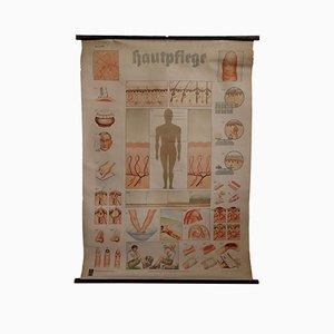 Deutsches Vintage Hautpflege Lernplakat, 1938