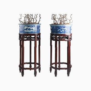 Macetas chinas de porcelana con pedestales de palisandro, década de 1900. Juego de 2