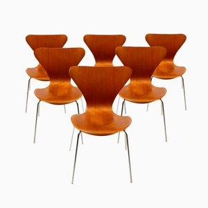 Dänische Serie 7 Teak Esszimmerstühle von Arne Jacobsen für Fritz Hansen, 1960er, 6er Set