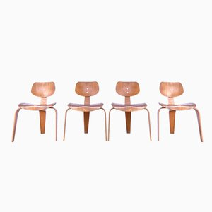 German SE 42 Dining Chairs by Egon Eiermann for Wilde & Spieth, 1949, Set of 4