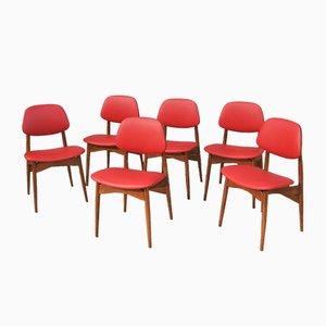 Italienische Esszimmerstühle aus Buche & Leder, 1950er, 6er Set