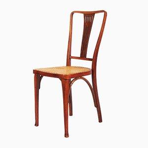 Antike Jugendstil Thonet Stühle aus Buche & Schilfrohr von Thonet