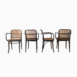 Czech Prague Bentwood and Cane Chairs by Josef Hoffman, 1960s, Set of 4