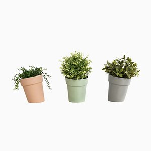 Distorted Flowerpots from Studio Lorier, Set of 3