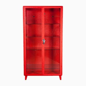 Polish Doctor's Medical Cabinet with Red Alligator Powder Coating, 1920s