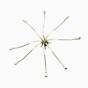 Chandelier with Brass Arms and Leaves by Osvaldo Borsani, 1950s