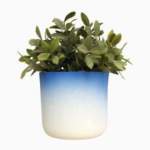 Flowertop Flowerpot from Studio Lorier