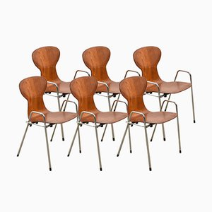 Stackable Plywood Chairs by Willy Van Der Meeren for Tubax, 1980, Set of 6
