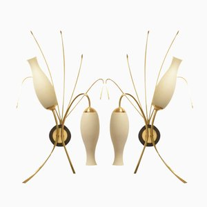Mid-Century French Organic Brass & Glass Wall Sconces, Set of 2