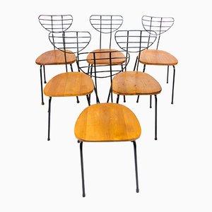 Radar Stühle, 1950er, 6er Set
