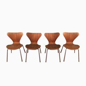 Chaises Ant 3107 en Teck et en Contreplaqué par Arne Jacobsen pour Fritz Hansen, 1960s, Set de 4