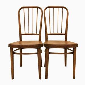 Chaises A 63 Vintage par Josef Frank pour Thonet, Set de 2