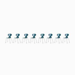 Chaises de Salon Ant Modèle 3100 par Arne Jacobsen pour Fritz Hansen, 1967, Set de 8