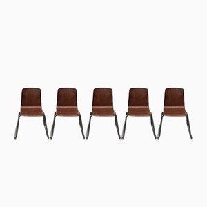 Stapelbare Thur-Op-Seat Stühle mit Metallrahmen von Pagholz, 5er Set