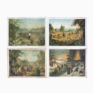 Antike Vier Jahreszeiten Wandkarte von G. Schweisinger, 1885