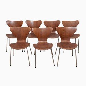 Sillas Ant modelo 3107 de teca y contrachapado de Arne Jacobsen para Fritz Hansen, años 60. Juego de 7