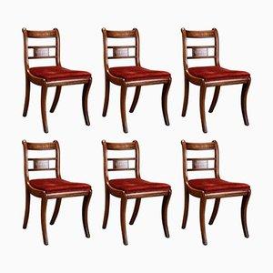 English Rosewood and Mahogany Chairs, Set of 6
