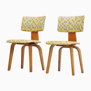 SB03 Stühle von Cees Braakman für Pastoe, 1954, 2er Set