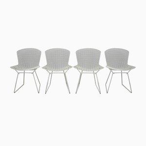 Modell 420 C Esszimmerstühle von Harry Bertoia für Knoll, 4er Set