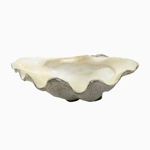 Clam Shell Vide Poche Bowl, 1950s