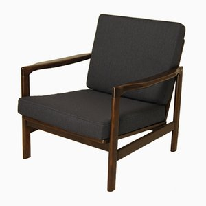 Polish Lounge Chair by Zenon Bączyk for Swarzędzkie Fabryki Mebli