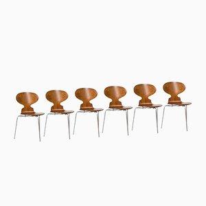 Dänische Stühle des Modells Armeise aus Palisander von Arne Jacobsen für Fritz Hansen, Set of 6
