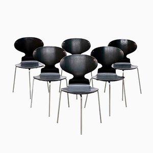 Model FH 3100 Ant Chairs by Arne Jacobsen for Fritz Hansen, 1969, Set of 6