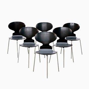 Modell FH 3100 Ant Stühle von Arne Jacobsen für Fritz Hansen, 1969, 6er Set