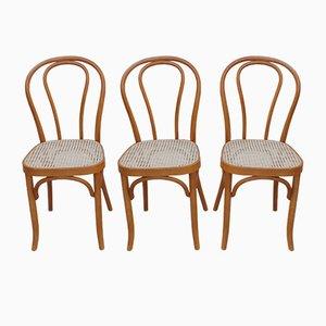 Vintage Esszimmerstühle aus Bugholz & Rattan, 3er Set