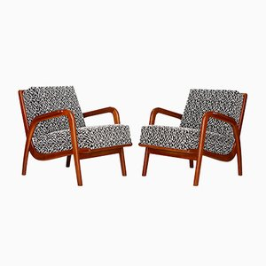 Czech Mid-Century Armchairs, 1950s, Set of 2