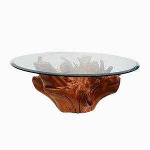 Mid-Century Teak Baumwurzel Couchtisch mit Angeschrägtem Glas