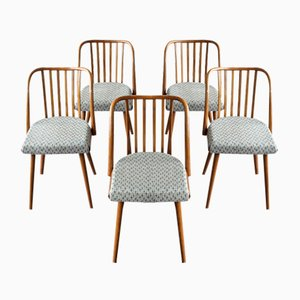 Vintage Dining Chairs from TON, 1960s, Set of 5
