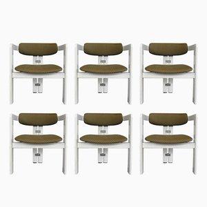 Italian Pamplona Chairs by Augusto Savini for Pozzi, 1965, Set of 6