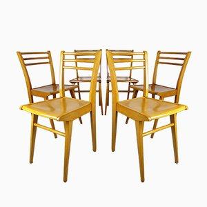 Buchenholz Esszimmerstühle von Luterma, 1950er, 6er Set
