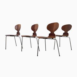Sedia Ant 3100 Mid-Century di Arne Jacobsen per Fritz Hansen, set di 4