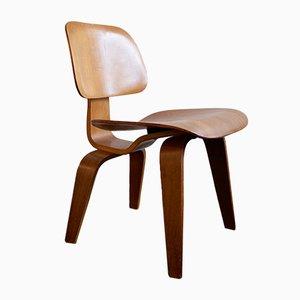 Chaise DCW en Contreplaqué par Charles & Ray Eames pour Evans