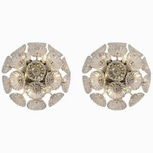 Starbust Sputnik Glass Flower Wall Lights, 1960s, Set of 2