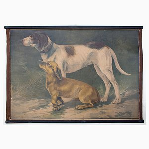 Hund Wandplakat von Karl Jansky, 1897