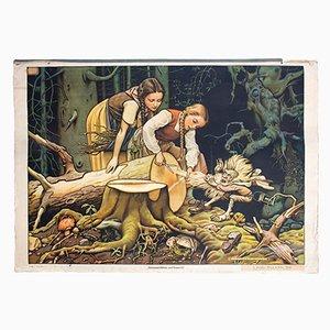 Póster del cuento de hadas Snow White and Rose Red de Adalbert Pilch, 1951